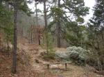 Hot Springs National Park - Gulpha Gorge Trail - Bench