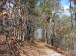Hot Springs National Park Goat Rock Trail