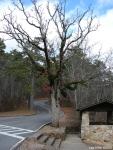 Hot Springs National Park Trail Shelter