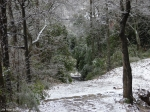 Hot Springs National Park Dead Chief Trail Ice Snow