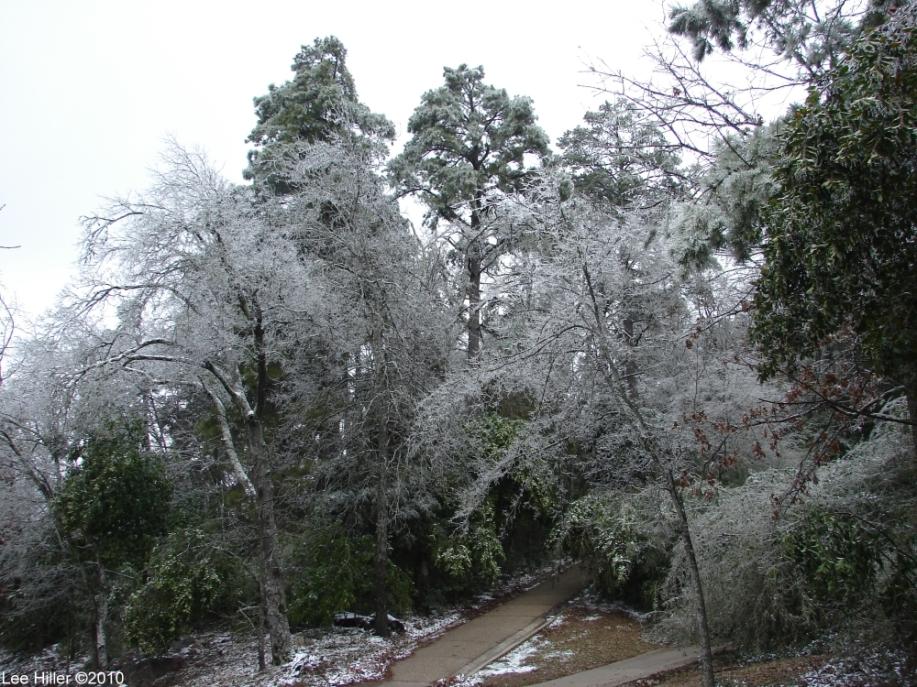Hot Springs National Park Ice Snow Peak Trail