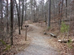 Hot Springs Mountain Trail - Second Section - Trail Junction