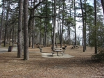 Hot Springs Mountain Trail - Picnic area