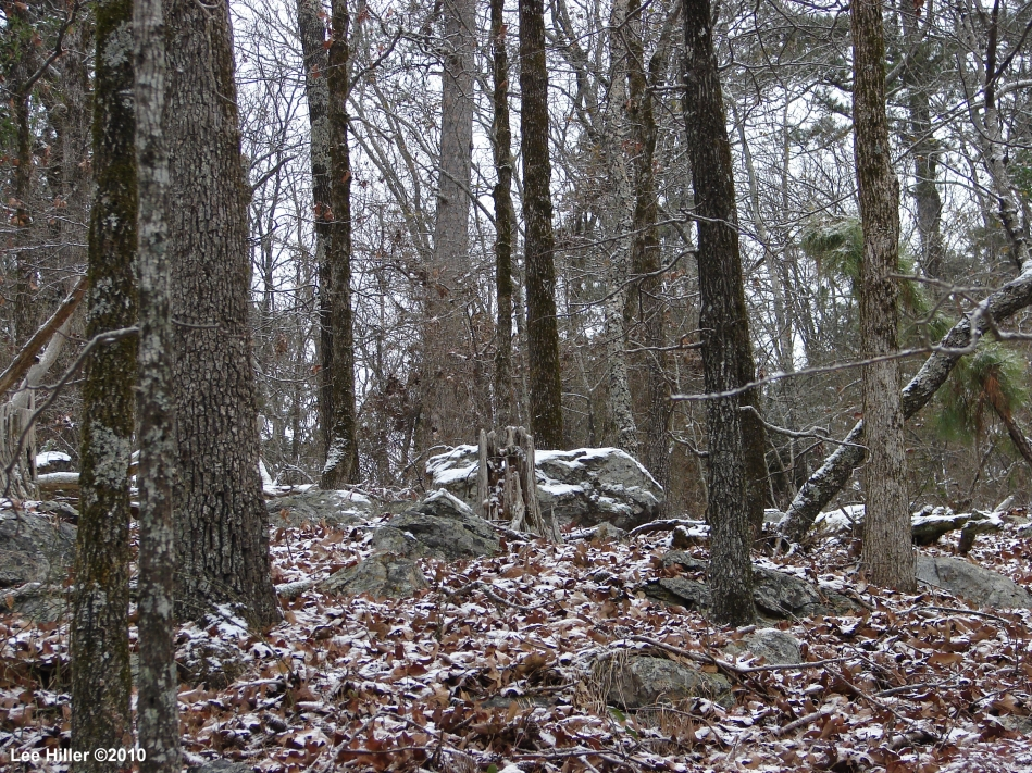 "Short Cut Trail - ""The Grave Yard"" in the snow"