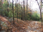 Hot Springs National Park, Peak Trail - Late Autumn