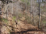 Dead Chief Trail - On way to Gulpha Gorge