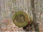 Hot Springs Mountain Trail Vandalism Log 01/22/2010