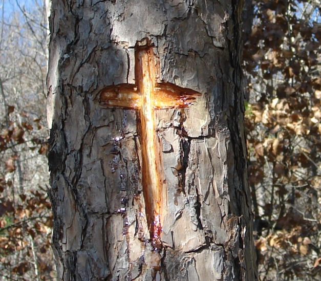 Hot Springs National Park Vandaism Cross 01/25/2010