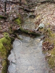 Hot Springs National Park Trails Dead Chief Trail Creek