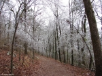 Hot Springs National Park Trails Short Cut Trail