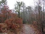 Hot Springs National Park Trails Upper Dogwood