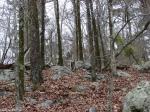 Hot Springs National Park Trails Short Cut Grave Yard