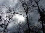 Hot Springs National Park Trails Short Cut Turbulant Skies