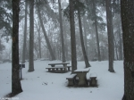 Hot Springs National Park Trails Snow Picnic Area