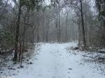 Hot Springs National Park Trails Short Cut Snow