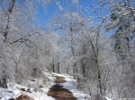 Hot Springs National Park Trails Goat RockTrail
