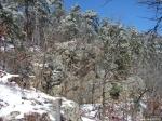 Hot Springs National Park Trails Goat Rock