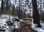Hot Springs National Park Trails Upper Dogwood Trail