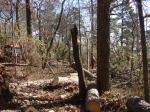 Hot Springs Mountain Short Cut Trail Chainsaws NPS