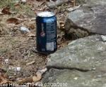 Honeysuckle Trail Rest Hut Pepsi Can 02/20/2010