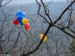 Hot Springs Mountain Trail East East Balloons RAC