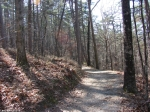 Hot Springs Mountain Trail West