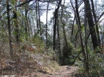 Hot Springs National Park, AR Dead Chief Trail