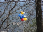Hot Springs Mountain Trail Rent-A-Center Balloons