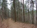 Hot Springs National Park, AR Lower Dogwood Trail