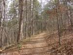Hot Springs National Park Upperr Dogwood Trail