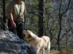 Gulpha Gorge Trail Dog Off Leash