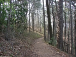 Hot Springs National Park Lower Dogwood Trail