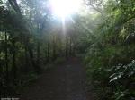 Peak Trail Sunrise
