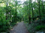 Hot Springs National Park, Arkansas Peak Trail