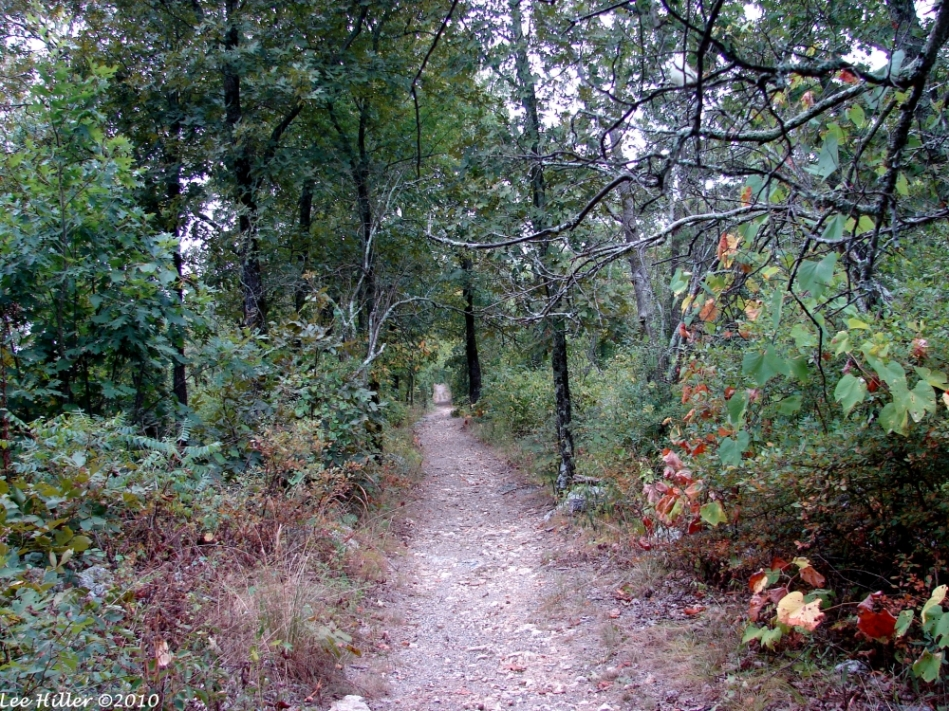 Music Mountain Sunset Trail