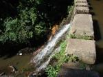 HSNP Ricks Pond Dam Spill