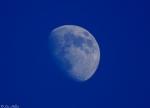 Promenade Blue Moon