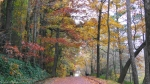 Hot Springs National Park, AR Promenade Autumn