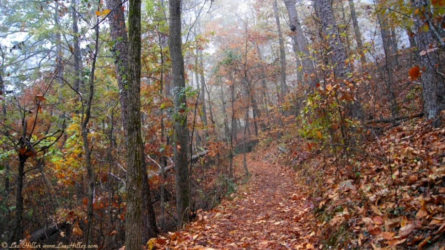 West Mountain Trail Autumn Fog