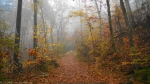 West Mountain Canyon Trail Autumn Fog