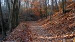 West Mountain Canyon Trail Autumn