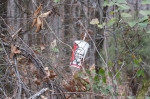 Hot Springs Mountain Trail KFC Cup Litter