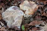 Dead Chief Trail Beautiful Rocks