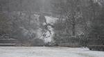 HSNP Arlington Lawn Snow