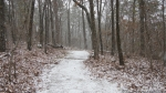 Short Cut Trail Snow