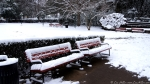 Arlington Lawn benches