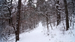 Hot Springs Mountain Trail in the Snow