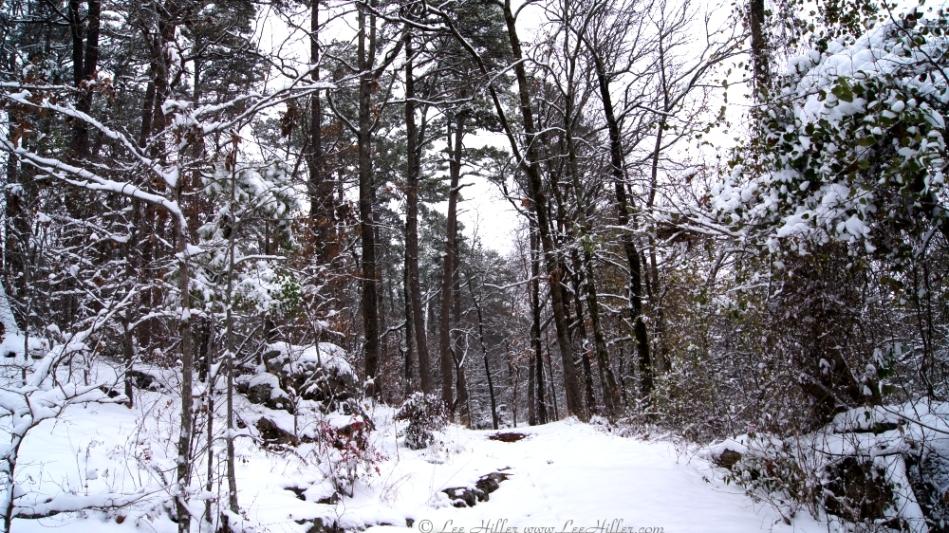 Short Cut Trail Snow