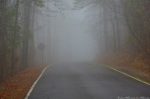 Hot Springs Mountain Road Fog