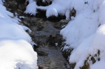 Hot Springs Mountain Trail Creek Snow